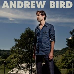 andrew_bird_art_resized